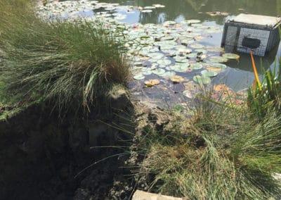 Fixing leaking lake